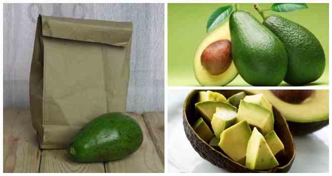 хранение авокадо