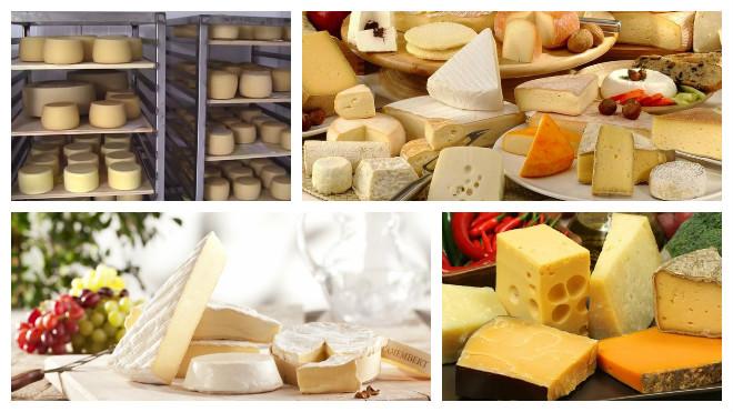 Хранение твердых сыров