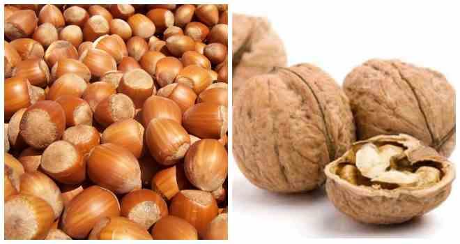 орешки фундук