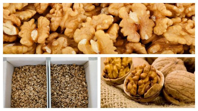Хранение очищенных грецких орехов