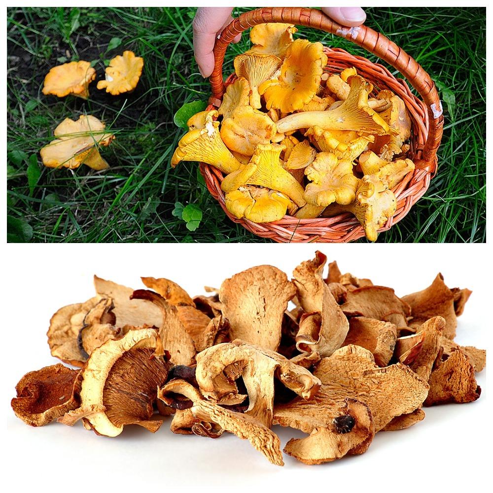Разбираемся в вопросе, сколько хранятся сушеные грибы