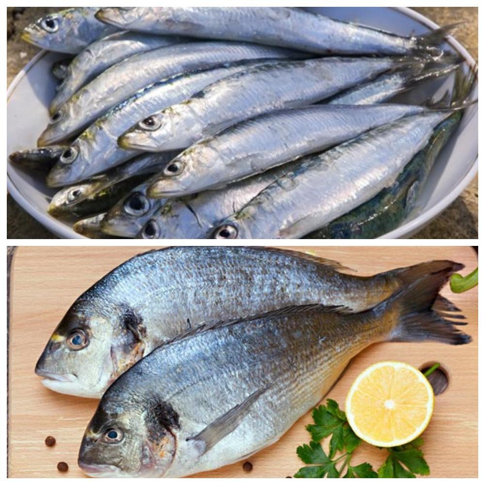 Как хранить соленую рыбу – полезные советы