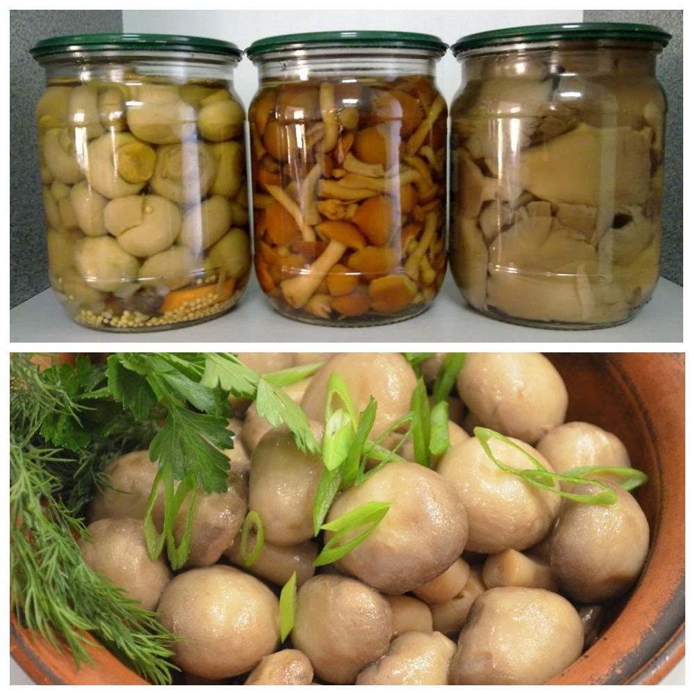 Сколько хранятся маринованные грибы - полезные советы