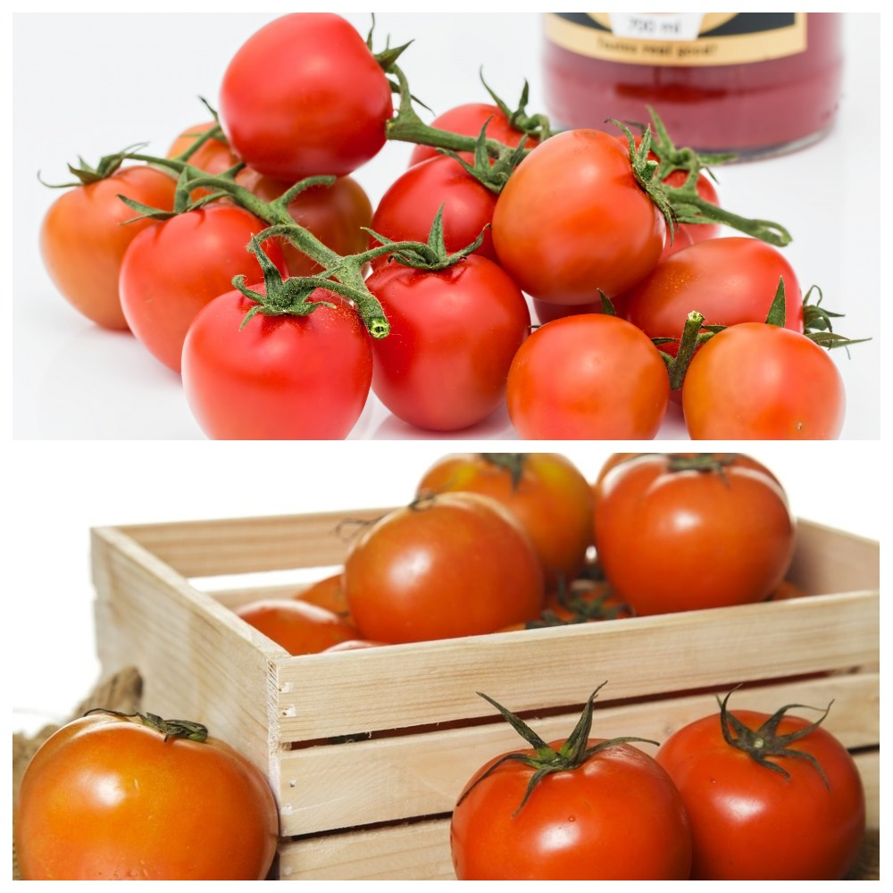 Как правильно хранить помидоры?