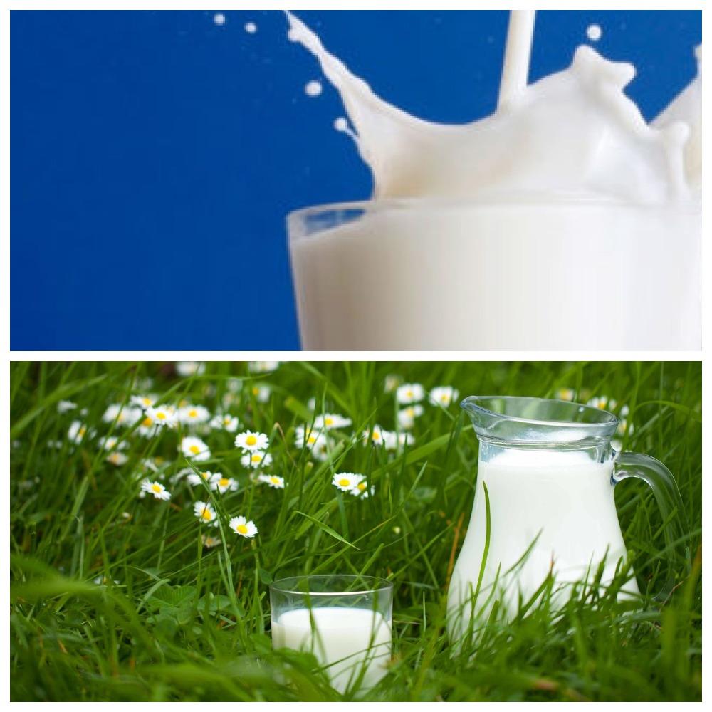 Срок годности и правила хранения молока