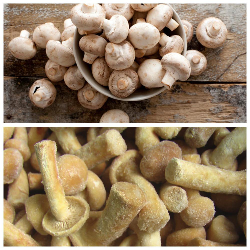Сколько можно хранить замороженные грибы в морозилке и холодильнике