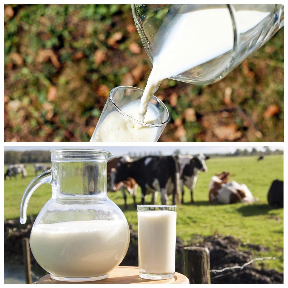 Как хранится молоко
