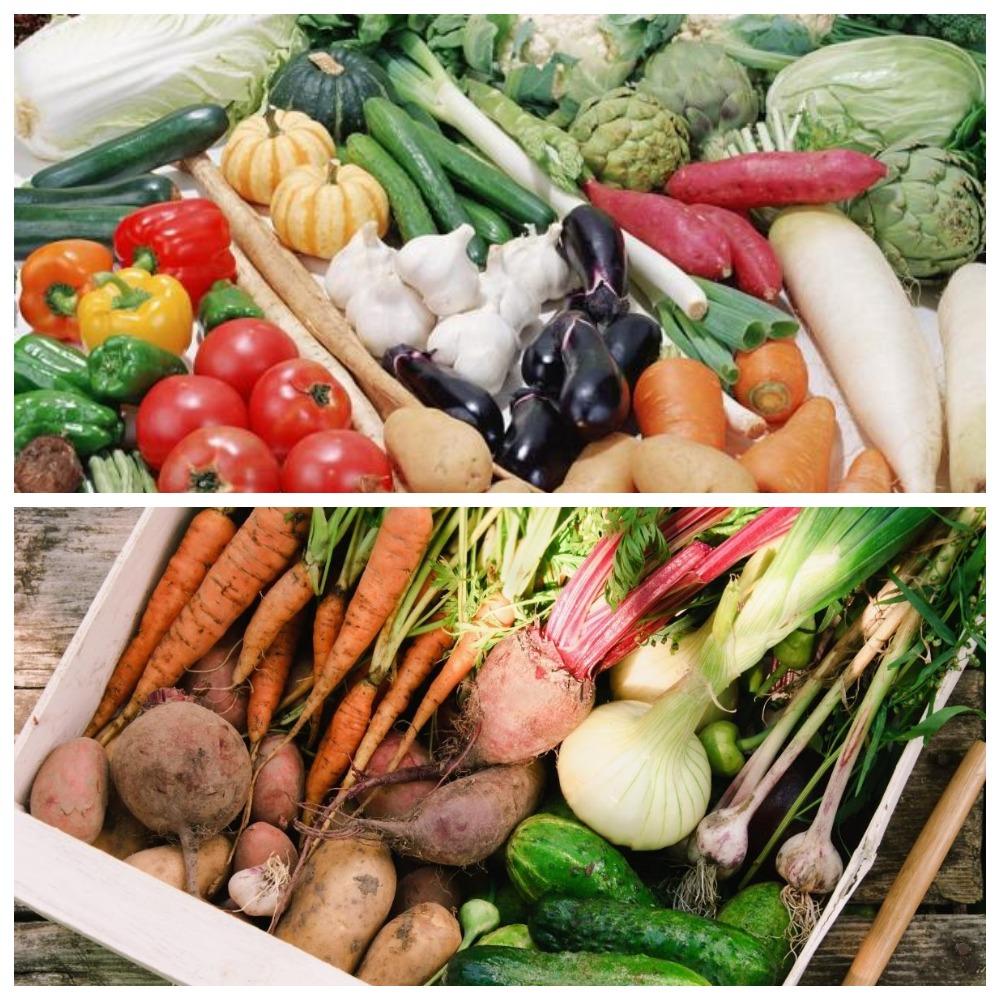 Хранение овощей дома