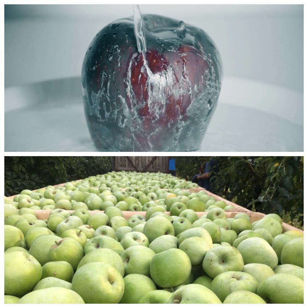Как обрабатывают яблоки