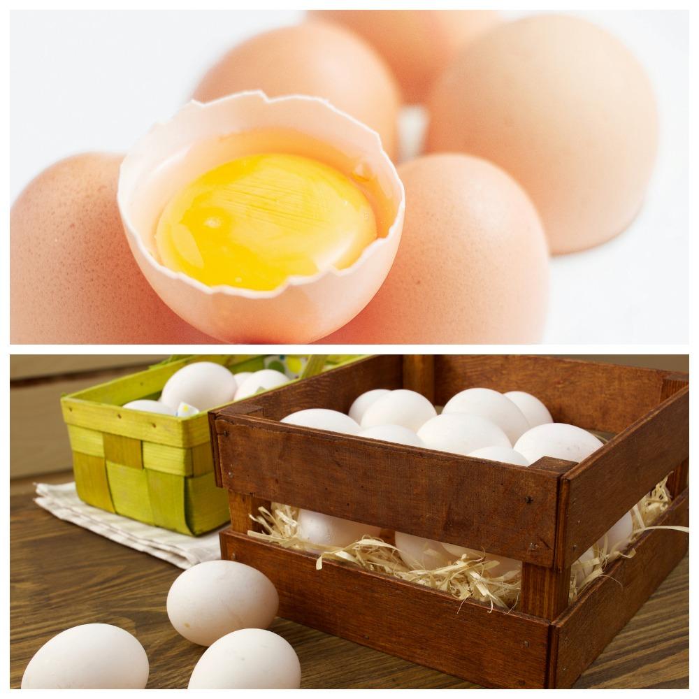 Как хранить сырые и вареные яйца без холодильника