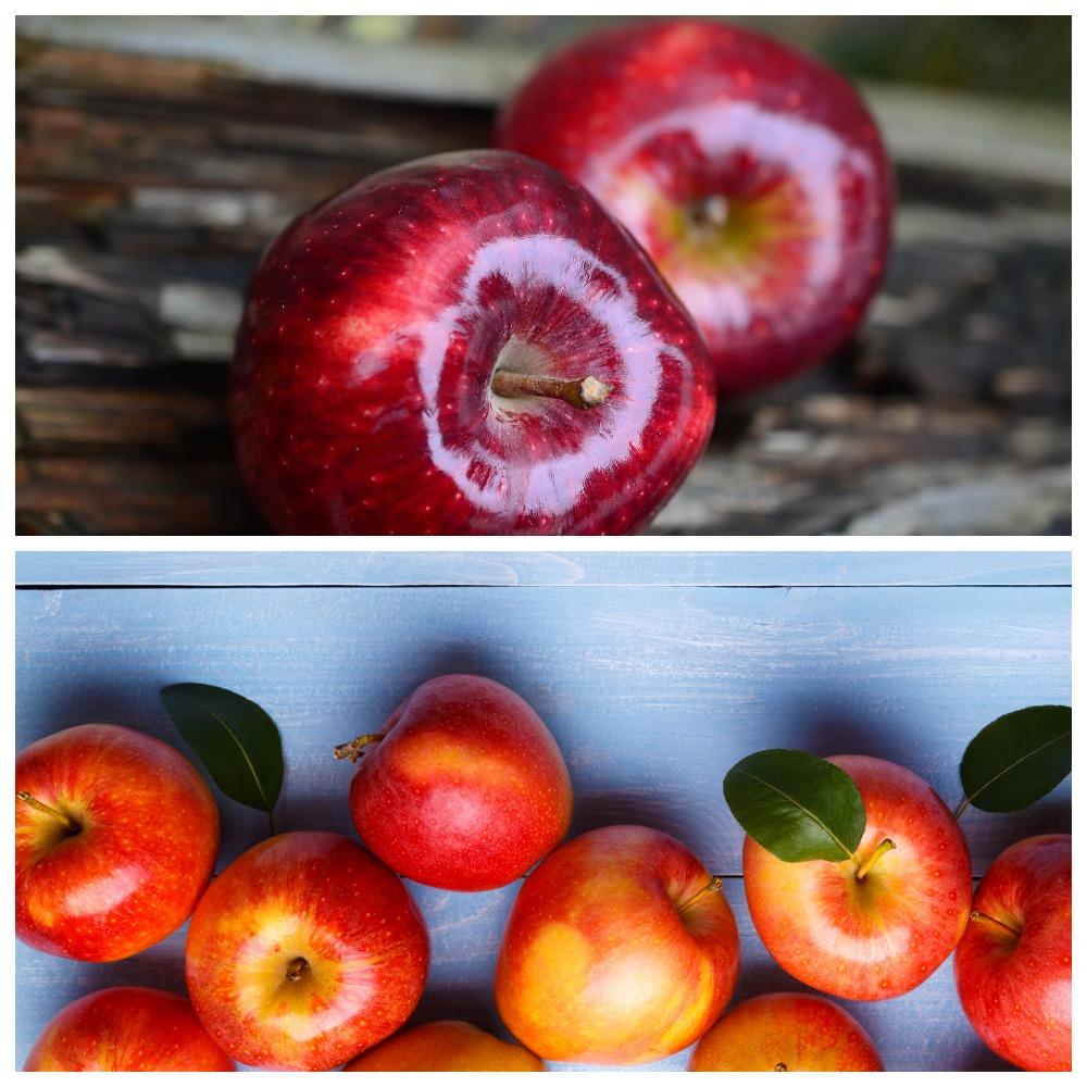 Чем и как обрабатывают яблоки для длительного хранения
