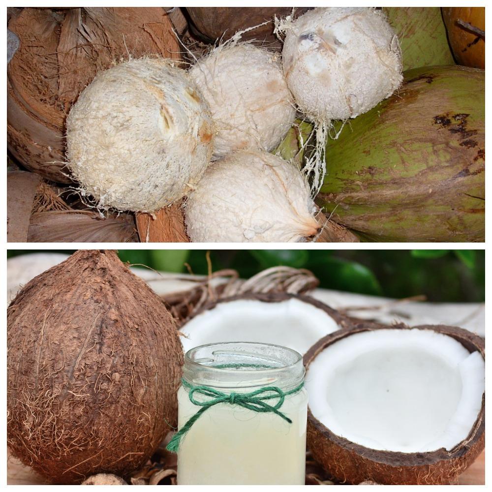 Как хранить кокосы