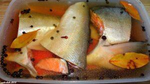 Рыба в соляном растворе