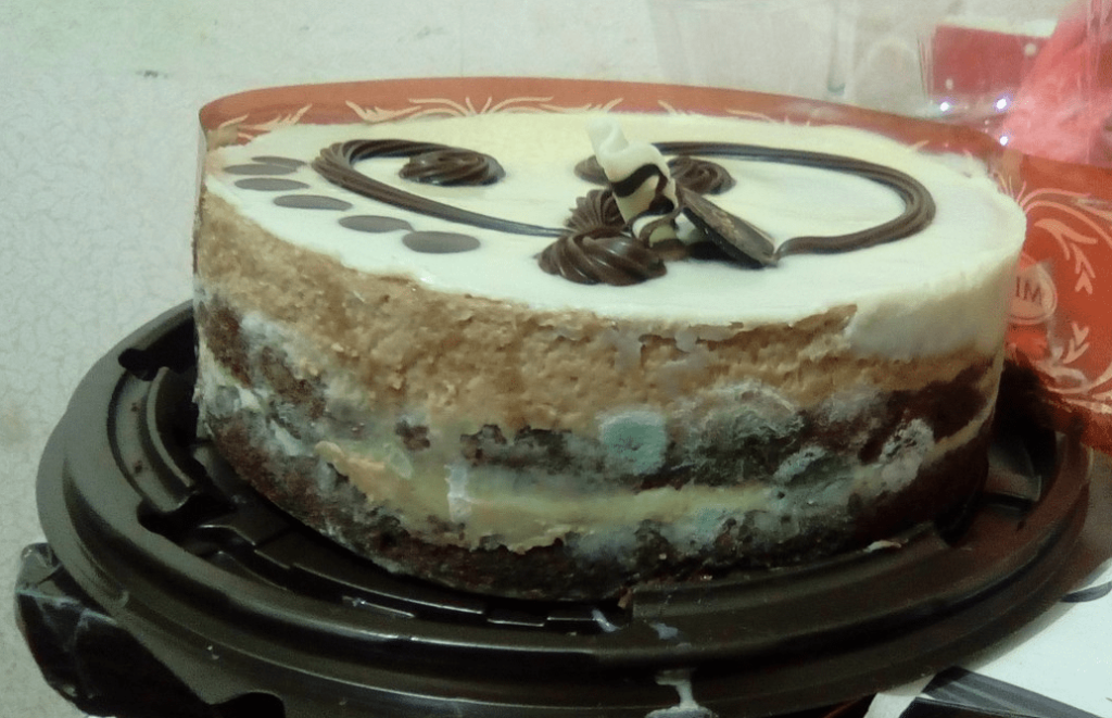 Торт просроченный с плесенью